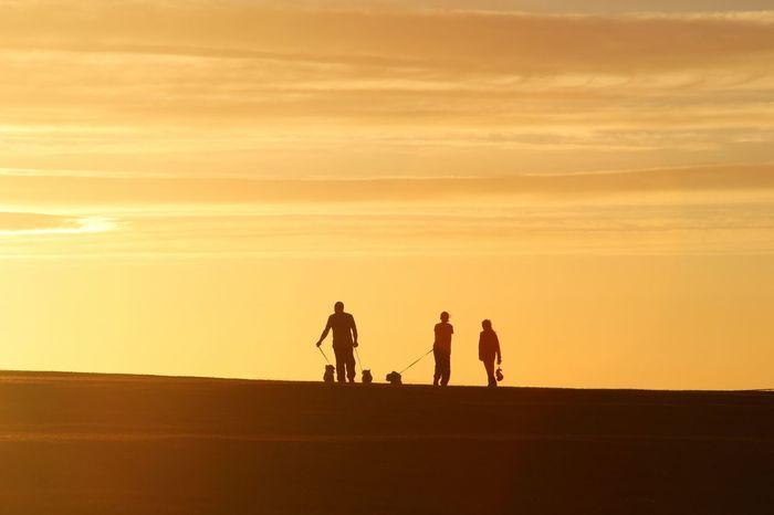 walking Sunset Silhouettes Sun