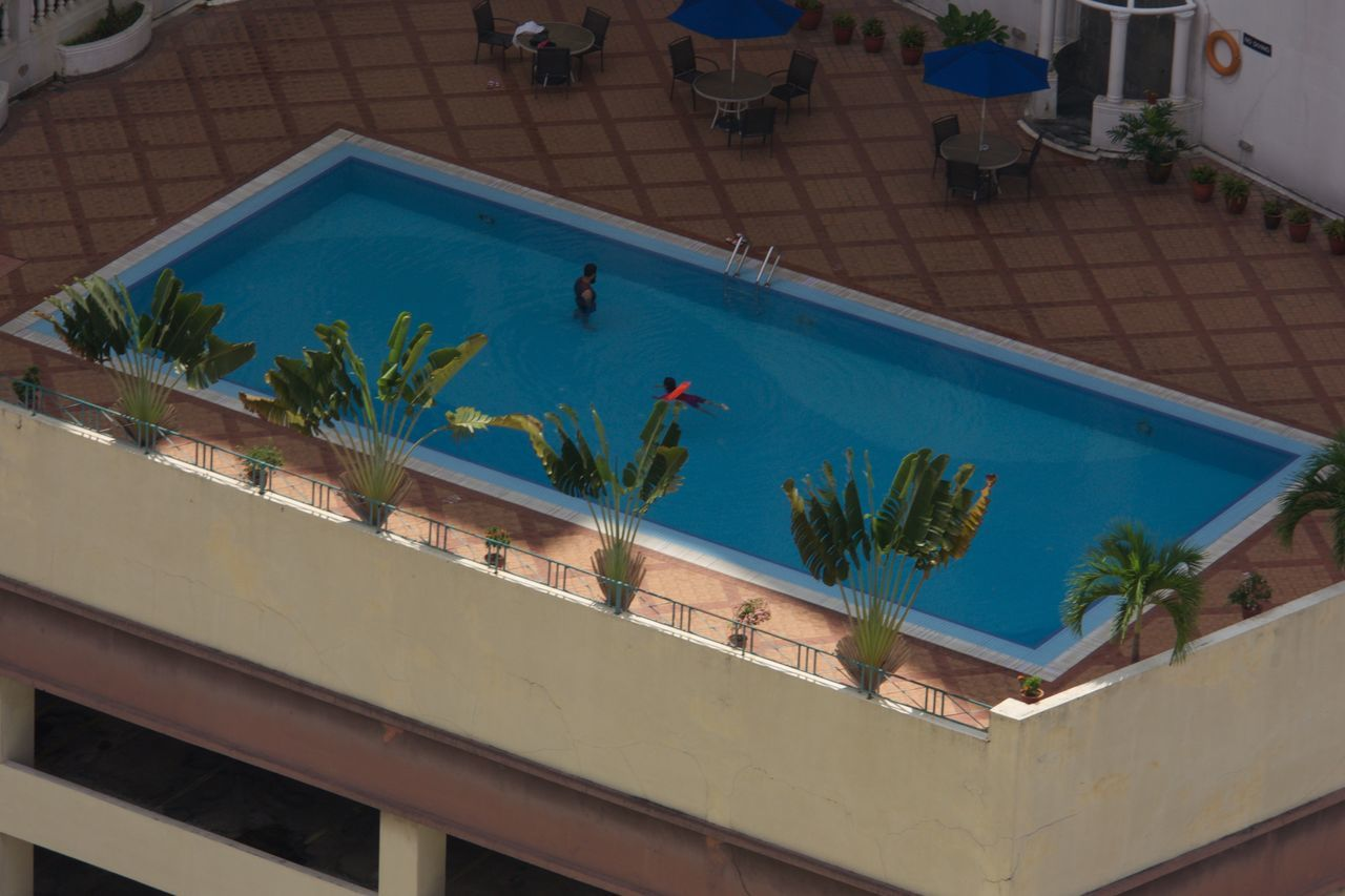 high angle view, potted plant, plant, swimming pool, real people, day, palm tree, indoors, nature