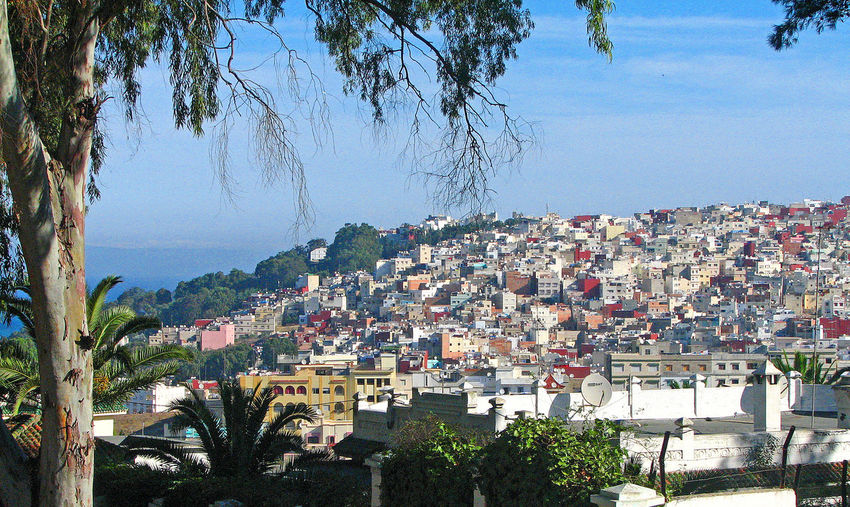 Overlooking the suburbs of Tangier, Morocco North Africa Marocco Suburbs Of Tangier Architecture Building Exterior Built Structure City Cityscape Day Nature No People Outdoors Sky Sunlight Tangier_Morroco Tree Lost In The Landscape Premium Collection
