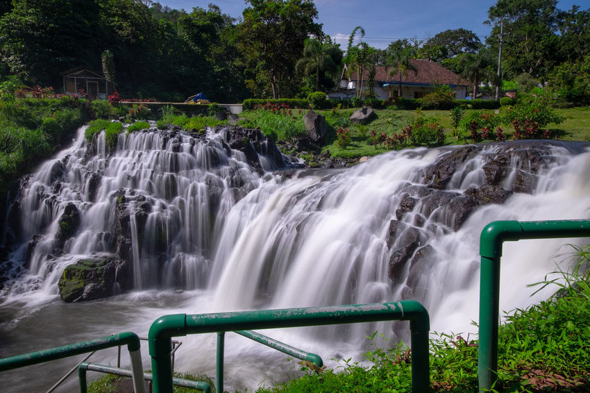 Amazing campoan waterfall, little niagara from bondowoso, east java, indonesia Landscape_Collection Nature Beauty In Nature Blurred Motion Bondowoso Environment Flowing Flowing Water Long Exposure Motion Nature No People Outdoors Plant Scenics - Nature Stockphoto Tree Water Waterfall
