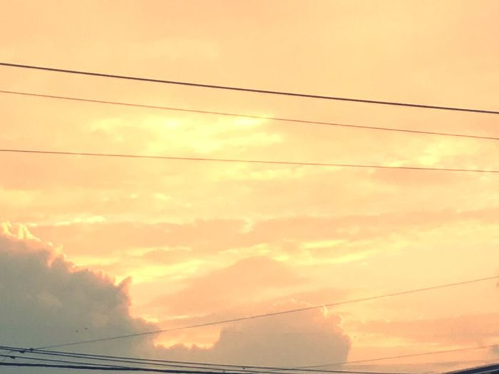 Orange Color 黄昏 Low Angle View Sky Sunset