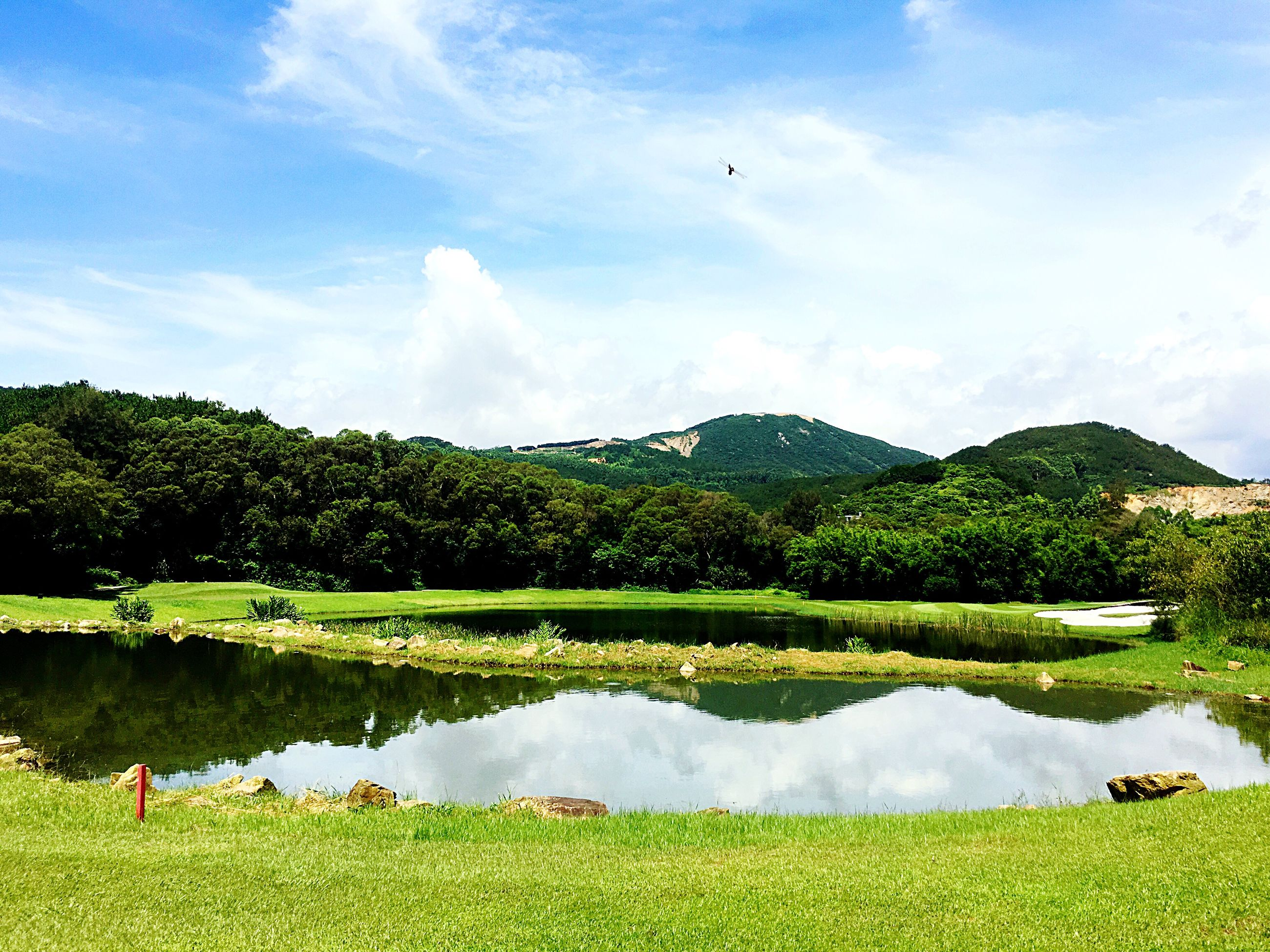 tree, water, grass, sky, scenics, tranquil scene, green color, beauty in nature, lake, tranquility, mountain, landscape, nature, cloud - sky, growth, cloud, idyllic, day, travel destinations, tourism, vacations, outdoors, non-urban scene, green, grassy, lush foliage, plant