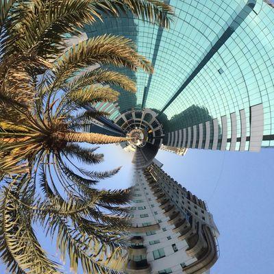 Dubai Dubaicity Sharjah Dubai❤ Palm Tree Oae Sand Sea Peace Traveling Relaxing EyeEm Nature Lover Taking Photos EyeEm Best Shots EyeEm Gallery Hello World Life Bestoftheday EyeEm Best Edits First Eyeem Photo EyeEmBestPics EyeEm Wonderful Travel Eye4photography