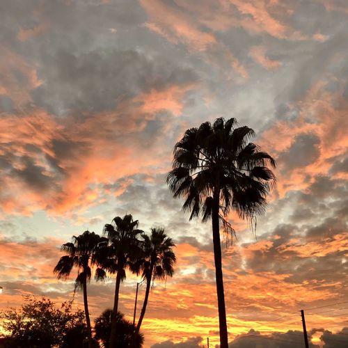 Sunrise ✨ Cloud