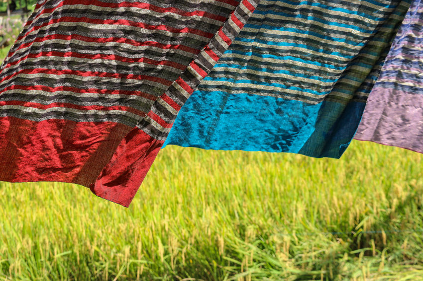 Thai traditional pattern cloth hanging above harvest rice farm Grass Textile Plant Clothing Field Nature Day Hanging Land Drying Pattern Red Laundry Focus On Foreground Outdoors Blue Low Section Plain Rural Scene No People Wind Rice Fashion Farm Field