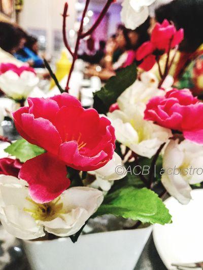Hide-n-seek ! Flower Close-up Indoors  Restaurant Decor Flower Head Acbistro Delhi India Random IPhoneography Acb