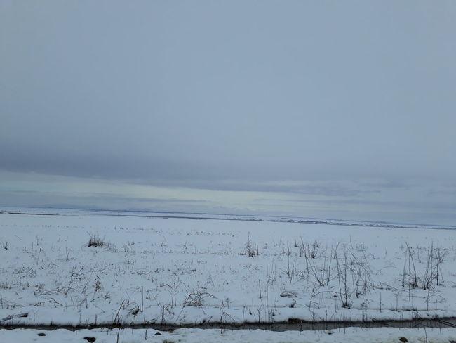 Snow Cold Temperature Landscape Winter Nature Beauty In Nature Frozen