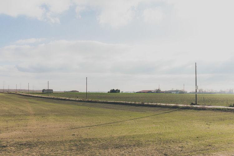 Field Sky Land