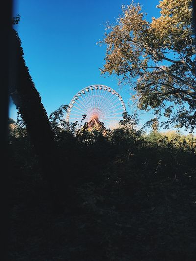 Amusement Park Sky Tree Nature No People Plant Low Angle View Water Day Tranquility Clear Sky Outdoors