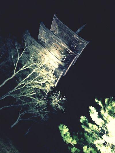 Temple Nightphotography