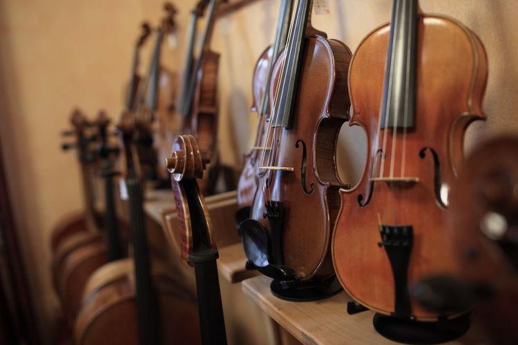 Close-up of violins