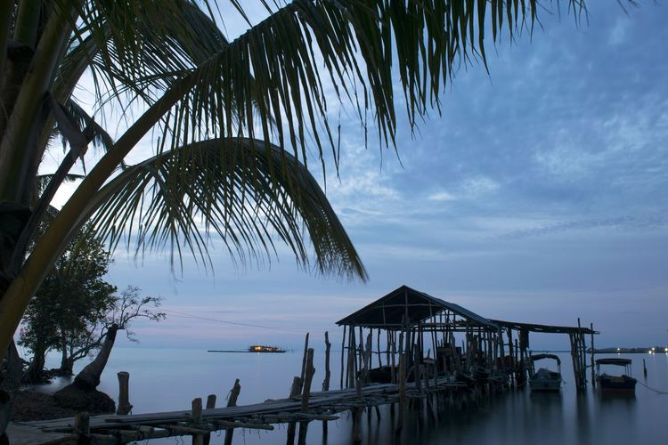 Outdoors Silhouette Water Sea Tree Beauty In Nature Stilt House Tropical Climate Harbor Traditional Wood - Material Architecture Old Classic Long Exposure Slowspeed Slow Shutter Longexposure Landscape Seascape Sunset Sunset_collection Motion Nature The Week On EyeEm