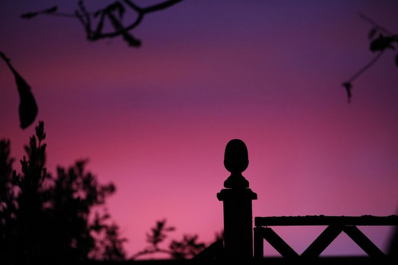 When the sky is lit in pink and blue, everything looks that little bit better. Sky Silhouette Sunset Nature Plant Beauty In Nature Tree Outdoors Railing Clear Sky Dusk Architecture Pink Color No People Focus On Foreground Purple Scenics - Nature Copy Space Tranquility