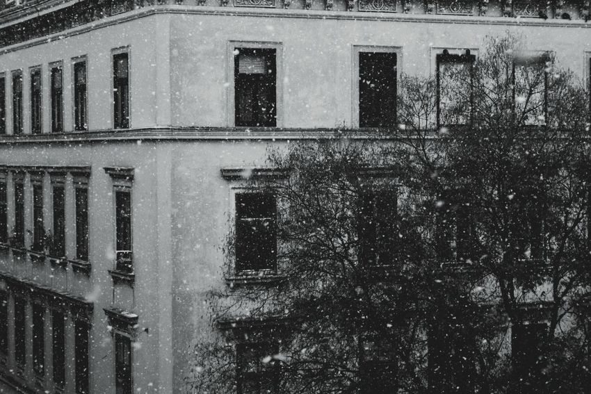 Snow Snowing Window Architecture Building Exterior Built Structure Outdoors No People Day Moody Sky Moody Weather Cold Temperature Cold Day Window View Cozy At Home Wintertime Winterwonderland Black & White Black And White Photography Winter Time Snow Day Snowflakes Cold Outside Black And White Friday