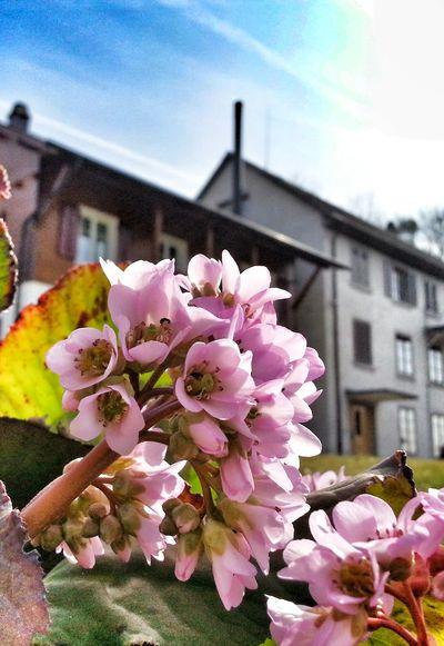 Beautiful Day Streamzoofamily Enjoying Life Taking Photos Europe