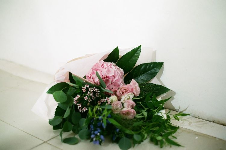 Flowers Bouquet Of Flowers White Background in Exhibition Minolta Alpha9000