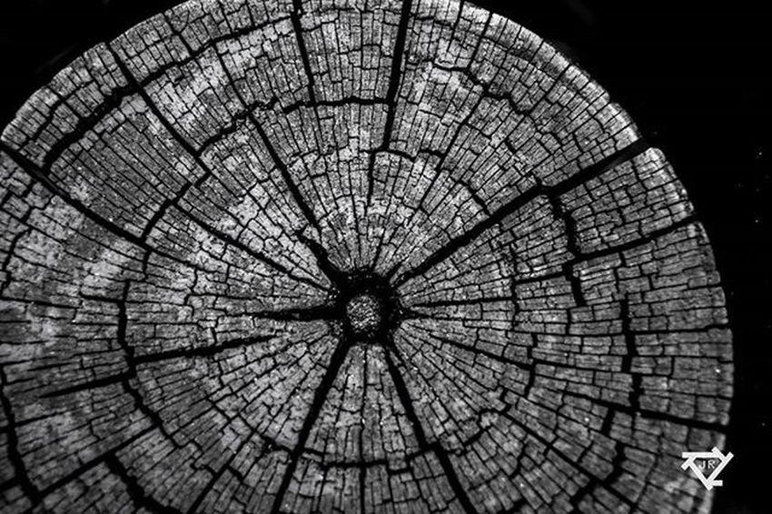 acá se tomaron fue el atrevimiento Nature Nikon Macro Abstract Abstractart Abstraction Abstracto Abstract_buff Abstractors_anonymous Abstractpainting Abstractexpressionism Abstractobsession Abstractphotography Abstractartist Abstracture Abstracts Abstracting_architects Abstractphoto Abstractrus Abstractexpressionist Abstract Art Abstractandinteresting Abstractogram Abstracted Abstractarts
