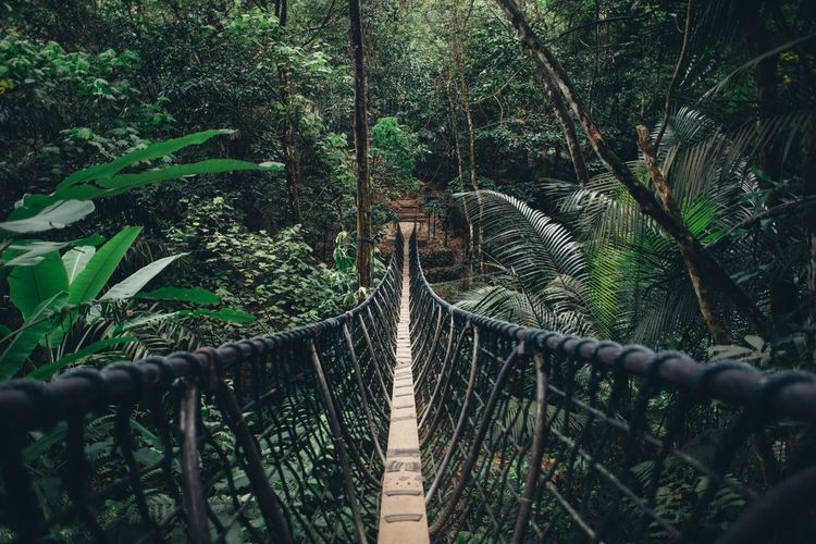 Explore. Kuala