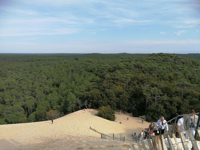 People Leisure Activity Outdoors Landscape Travel Destinations ☺️😊😍 Dune Du Pyla Playfulmood Beauty In Nature Holiday And Relaxing Pineforest Nature Desert Goodvibes