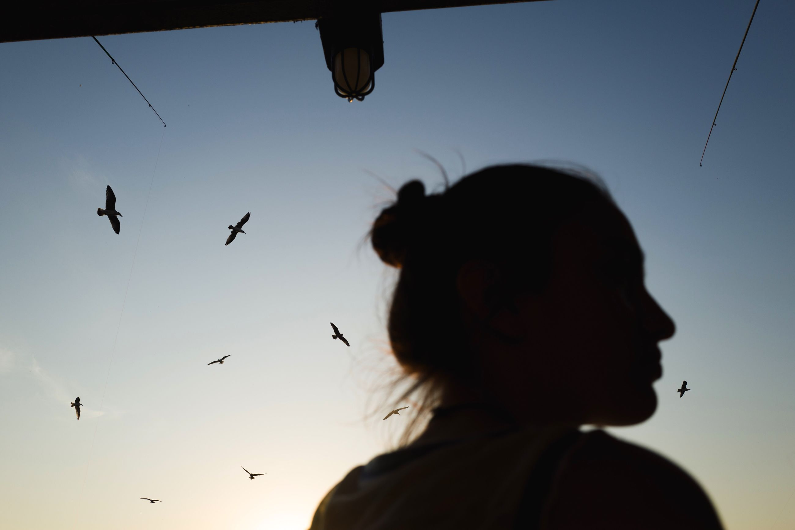 sky, headshot, one person, flying, real people, lifestyles, silhouette, animals in the wild, human hair, bird, leisure activity, day, close-up, large group of animals, outdoors, nature, adults only, people, adult