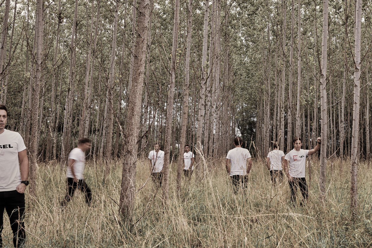 tree, nature, real people, growth, field, standing, men, outdoors, forest, day, landscape, grass, togetherness, lifestyles, women, full length, people, young adult, adult, adults only