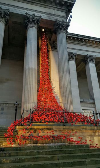 Architecture Art England Famous Place Liverpool Poppies  Sculptures St George's Hall St Georges Hall Weeping Window