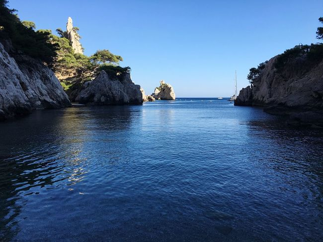 Calanques  Island Water Water Sky Scenics - Nature Beauty In Nature Tranquility Sea Clear Sky Tranquil Scene Nature Tree Day No People Blue Rock Waterfront Plant Land Rock Formation Idyllic Outdoors