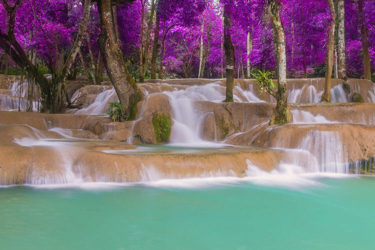 Water Waterfall Tree Plant Scenics - Nature Motion Beauty In Nature Long Exposure Flowing Water Nature No People Waterfront Blurred Motion Travel Destinations Land Forest Day Fountain Flowing Outdoors Power In Nature Falling Water