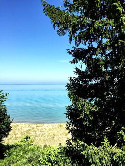 Lake View Check
