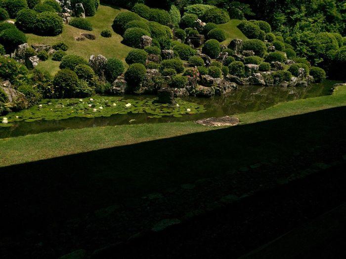 瞑想。 Ultimate Japan Japanese Garden Japanese Temple