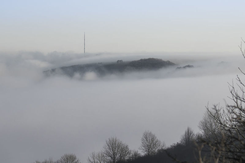 Day Fog Nature