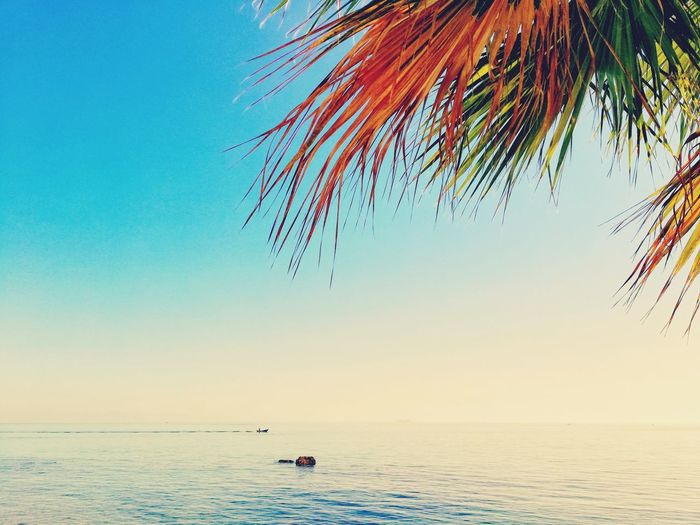 Water Sea Beach Sand Beauty In Nature Nature Underwater No People Horizon Over Water Sky Outdoors Multi Colored Blue Day Scenics