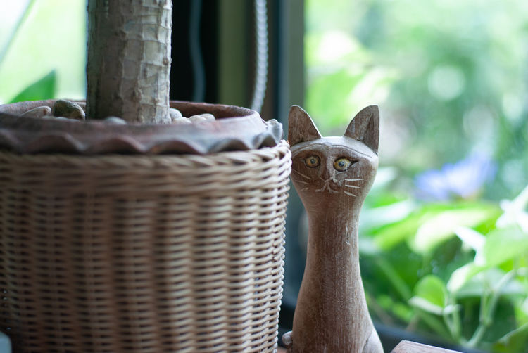 Close-up portrait of a cat in basket