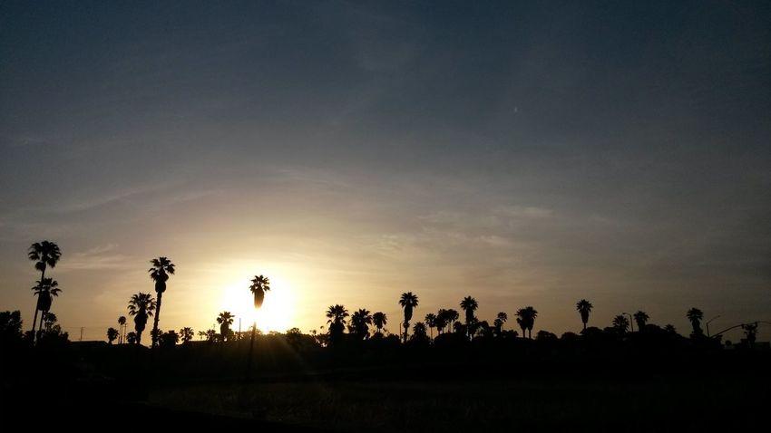 Taking Photos Sunrise_sunsets_aroundworld Sunrise