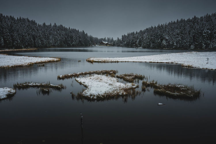 Scenic view of lake in forest against sky during winter