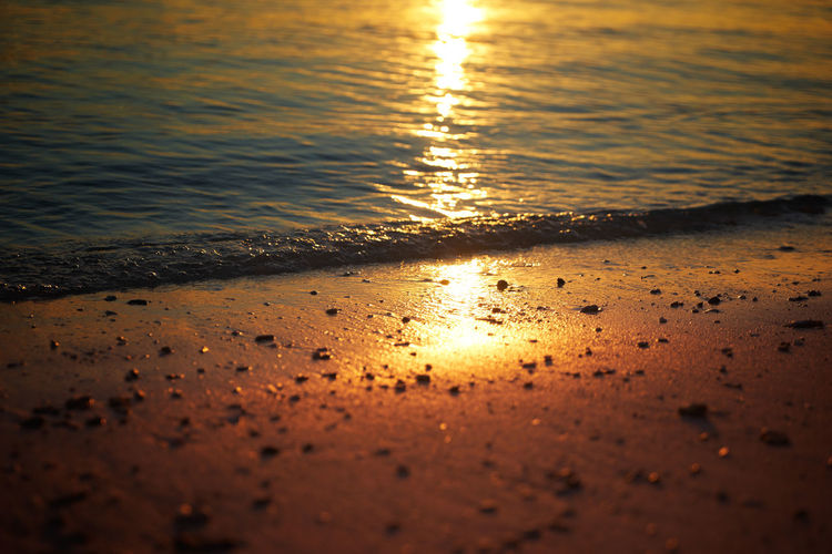 Close up of footprints on the beach sand at the golden hour. Abstract Beach Beautiful Beauty Blue Coast Color Colorful Dawn Dusk Evening Gold Golden Horizon Landscape Light Nature Night Ocean Orange Outdoor Red Reflection Sand Scene Scenery Scenic Sea Season  Shore Sky Summer Sun Sunlight Sunny Sunrise Sunset Sunshine Travel Tropical Vacation View Water Wave Weather Yellow