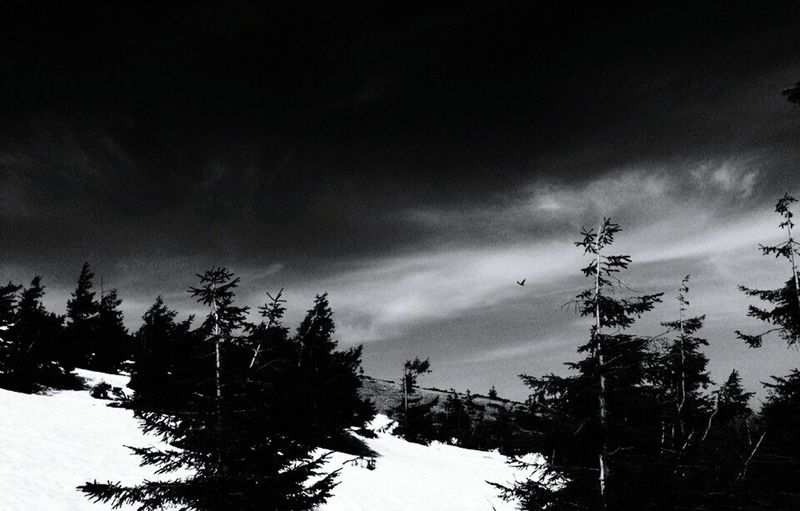 Mauntains Bird Clouds And Sky Blackandwhite Dramatic Dramatic Sky World
