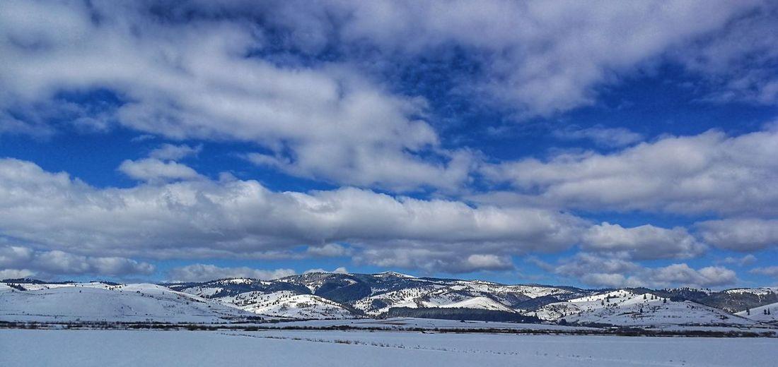 Transylvanian winter Transylvania Transylvanian Alps Harghita Humpback Whale Mountain Snow Cold Temperature Whale Sea Water Winter Polar Climate Wave Deep Snow Powder Snow Snowcapped Mountain