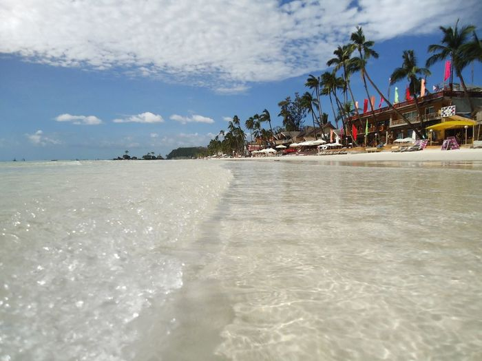 Ocean waves on white sand beach with palm trees Beach Life White Sand Exploration Journey Adventure Sunlight Idyllic Lifestyles Resting Relaxation Low Angle View Island Coastline Vacations Tourism Summer Sky Water Palm Tree Beach Cloud - Sky Sea Tropical Climate Nature Scenics - Nature Tranquility Travel Destinations Outdoors Tranquil Scene Day