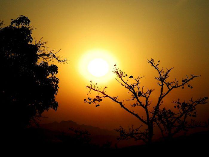 Sunrise_sunsets_aroundworld Sunrise And Trees Nikonphotography Awsome View Warm