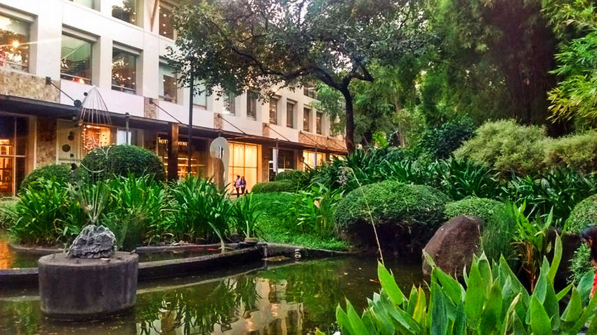 Greenbelt Makati Plants Architecture Building Exterior Built Structure Color Green Day Grass Green Color Green Plants Greenbelt Greenbelt3 Growth Leaf Mall Nature Nice Scenery No People Outdoors Plant Reflection Shopping Mall Tree Water