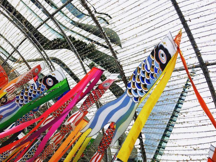 Jflag Fishflag Japan Low Angle View Travel Destinations