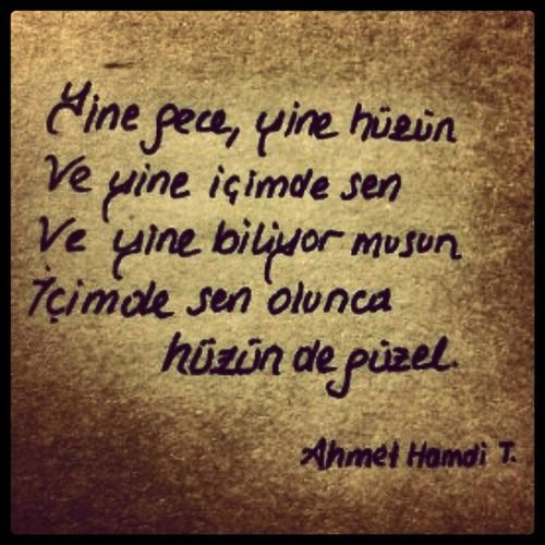 şiir Poet Ahmethamditanp ınar  üstad Ve bazen gitmek degiştirmez yerini , ben seni gelmeden de sevdim sevgilim.. MT