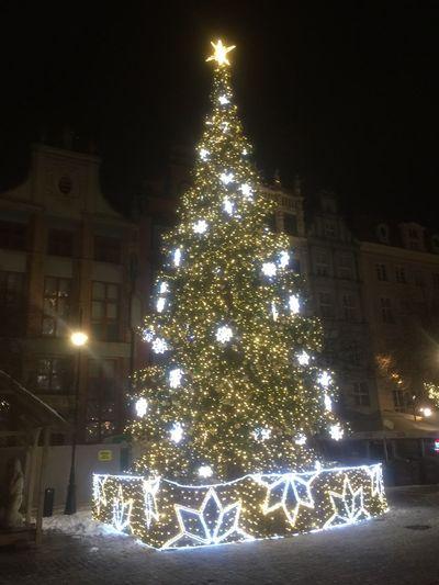 Beautiful christmas trea in Gdansk 🎄 #Vacation #hollidays #family #Poland #Gdansk christmas tree Christmas Christmas Decoration Illuminated Celebration Christmas Lights Night