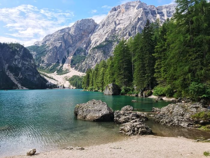Italy Braies Water Tree Plant Beauty In Nature Tranquility Nature Scenics - Nature Cloud - Sky Idyllic Lake Growth Sunlight Sky Non-urban Scene Mountain Tranquil Scene Rock Day No People Outdoors