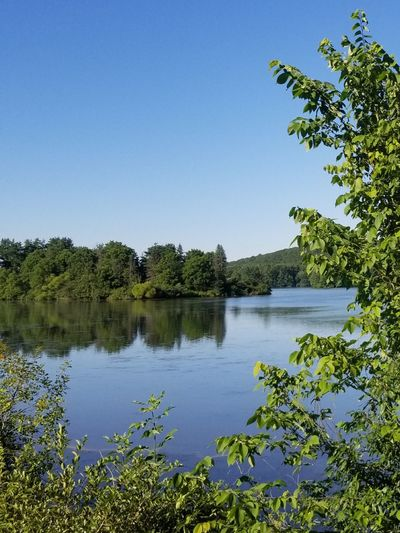 Outside Pennsylvania Nature Springtime Spring Beauty In Nature Scenics Scenery Tranquility Tranquil Scene Tree Water Clear Sky Lake Blue Reflection Sky Plant Landscape Lush - Description Reflection Lake Lush Foliage Lakeshore Tree Area Woods The Great Outdoors - 2018 EyeEm Awards