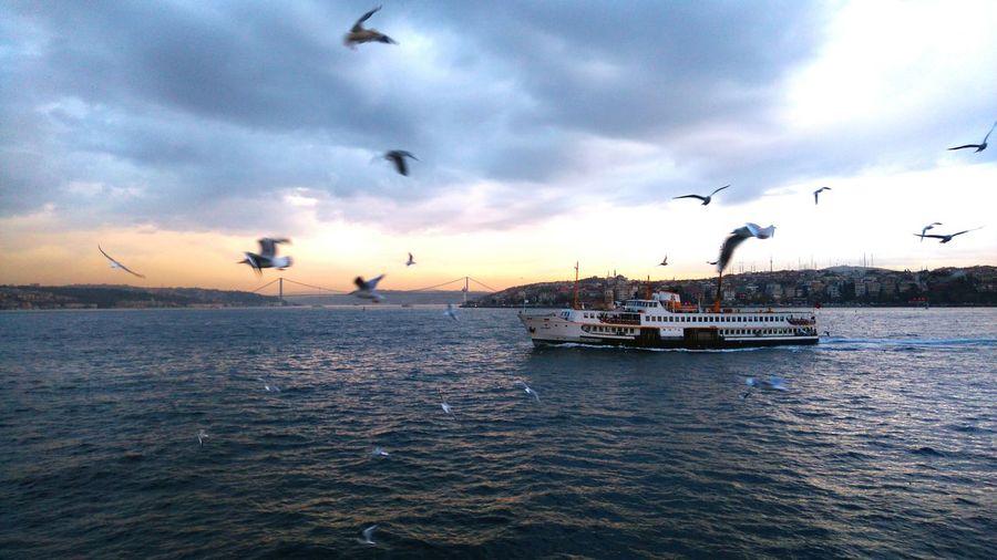 Marmarasea Vapur Boğaz Köprüsü