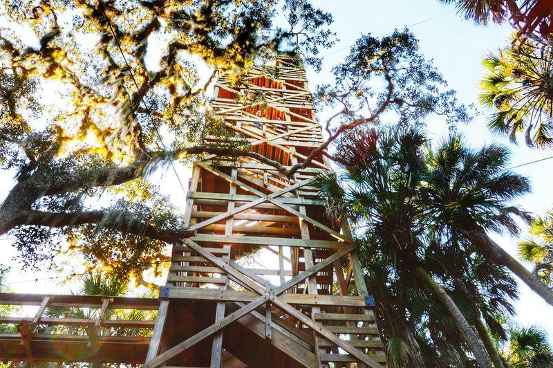 72 foot high tower at Myakka River State Park. Hiking Beautiful Day Myakka State Park  Myakka River Exploring Enjoying Life Nature Adventure Florida