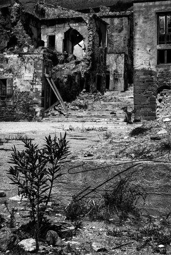 Black & White Decay Derelict Italia Mediterranean  Ruins Sicilia Sicily Abandoned Black And White Blackandwhite Blackandwhite Photography Decaying Disaster Earthquake Italy Poggioreale
