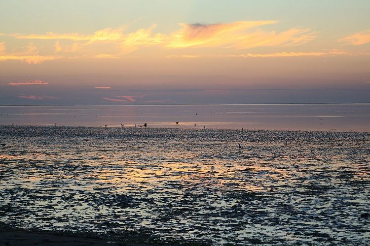 Sunset Beach Sea Vacations Horizon Over Water Sun Dramatic Sky Landscape Tourism Sunlight Sky Outdoors Low Tide Silhouette Travel Destinations Cloud - Sky Sand Tranquility Scenics Beauty In Nature Neuharlingersiel Live For The Story The Great Outdoors - 2017 EyeEm Awards Place Of Heart Sommergefühle